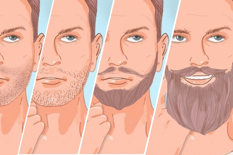 Four stages of beard growing from shadow phase to a full and long beard
